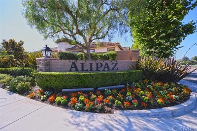 San Juan Capistrano Single Family Home For Sale: 32571 Del Zura
