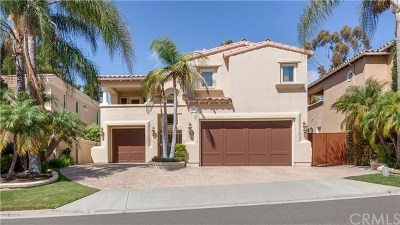 San Juan Capistrano Single Family Home For Sale: 30991 Via Mirador