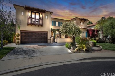 San Juan Capistrano Single Family Home For Sale: 33832 Montanas Del Mar