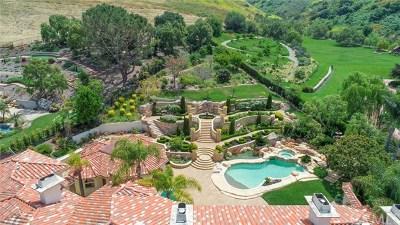 San Juan Capistrano Single Family Home For Sale: 28572 Paseo Zorro