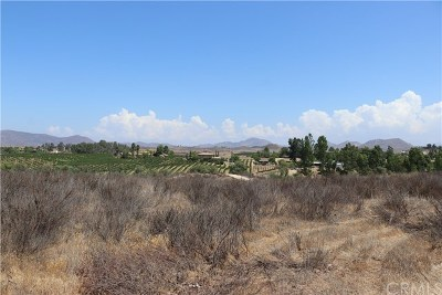 Temecula Residential Lots & Land For Sale: 1 Anza Road