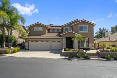 Orange County Single Family Home For Sale: 22 Songbird Road