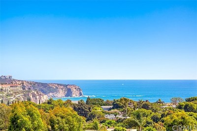 Dana Point Single Family Home For Sale: 32372 Via Antibes