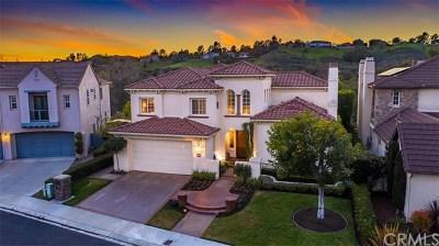Coto de Caza Single Family Home For Sale: 31 Raes Creek Lane