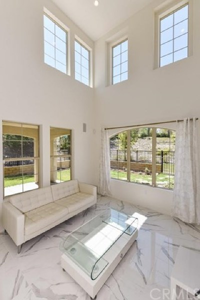 Lake Forest Condo/Townhouse For Sale: 262 Finch