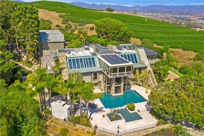 San Juan Capistrano Single Family Home For Sale: 30552 Hilltop Way