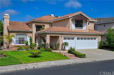 Coto de Caza Single Family Home For Sale: 5 Rolling Hills