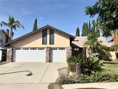 Placentia Single Family Home For Sale: 325 Purdy Avenue