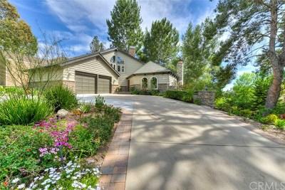 Coto de Caza Single Family Home For Sale: 31886 Via Faisan