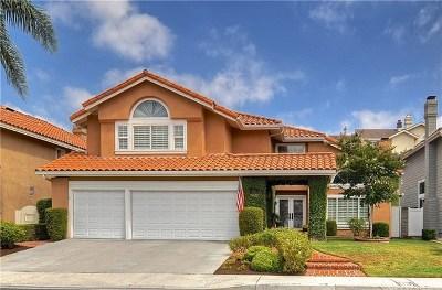 Mission Viejo Single Family Home For Sale: 22436 Rosebriar