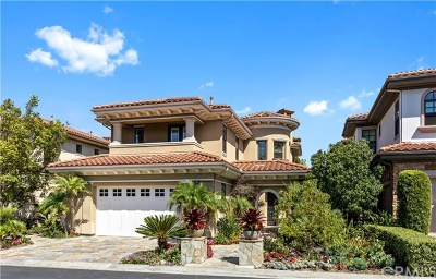 Dana Point Single Family Home For Auction: 18 Via Sienna