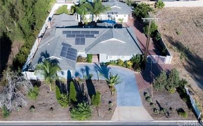Corona Single Family Home For Sale: 2217 S Lincoln Avenue