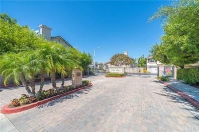 Costa Mesa Single Family Home For Sale: 2801 Hazel Place