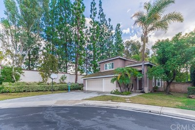 Tustin Single Family Home For Sale: 2878 Cox