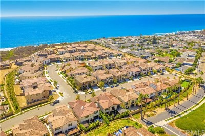 San Clemente Single Family Home For Sale: 111 Via Bellas Artes