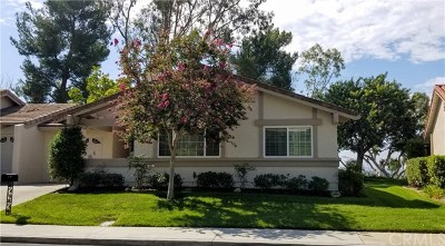 Mission Viejo Single Family Home For Sale: 28012 Via Bonalde