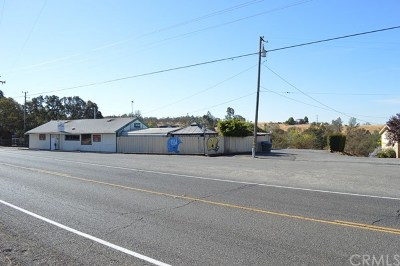 Commercial For Sale: 3470 Foothill Boulevard