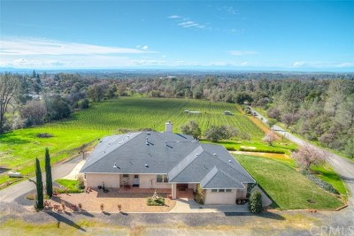 Oroville Single Family Home For Sale: 72 Quail Hill Place