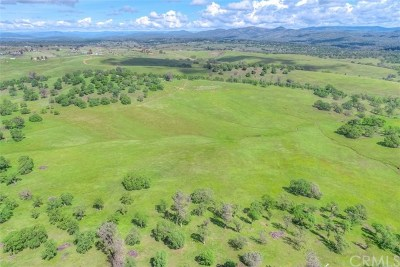 Oroville Residential Lots & Land For Sale: Alta Airosa Drive
