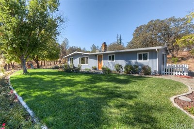 Oroville Single Family Home For Sale: 2940 Oro Garden Ranch Road