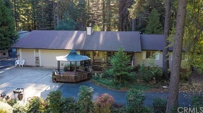 Forbestown Single Family Home For Sale: 160 Big Fir Road