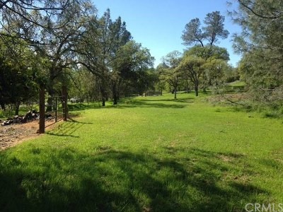 Oroville Residential Lots & Land For Sale: Valley View Drive