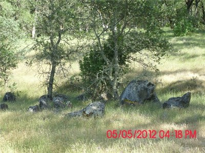 Oroville Residential Lots & Land For Sale: Lower Wyandotte Ave