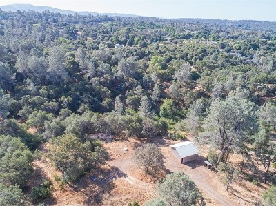 Oroville Single Family Home For Sale: 459 Skyline Boulevard