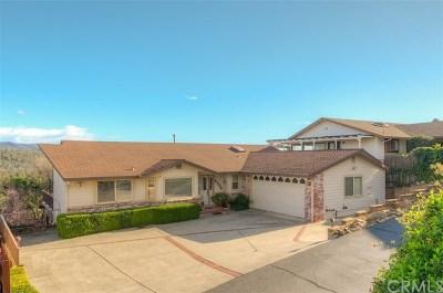 Oroville Single Family Home For Sale: 5332 Treasure Hill Drive