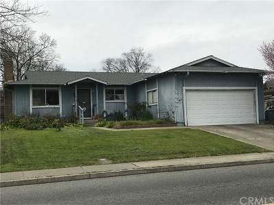 Oroville Single Family Home For Sale: 2860 Mitchell Avenue