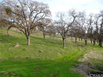 Oroville Residential Lots & Land For Sale: Via Las Lupes
