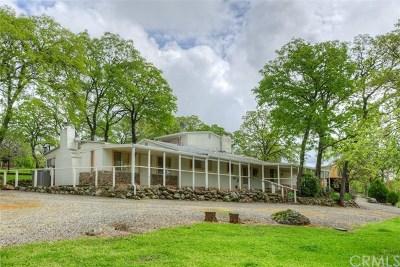 Bangor Single Family Home For Sale: 100 Quartz Mine Road