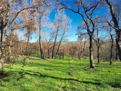 Oroville Residential Lots & Land For Sale: Bardolino Lane