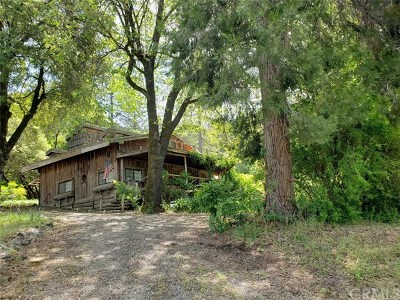 Oroville Single Family Home For Sale: 50 Broken Springs Road