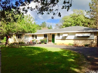 Oroville Single Family Home For Sale: 1115 Hurleton Road