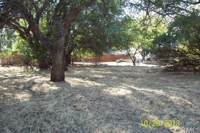 Oroville Residential Lots & Land For Sale: 5020 Royal Oaks Drive
