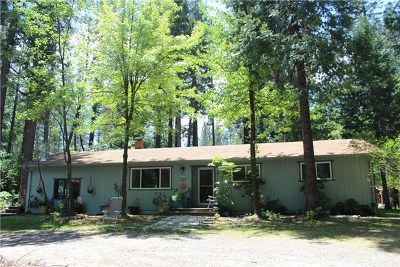 Berry Creek Single Family Home For Sale: 134 Rockerfeller Road