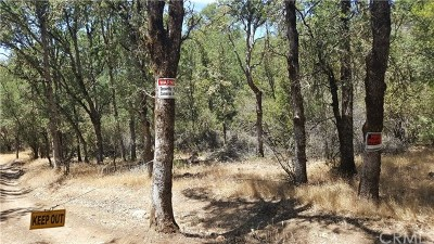Clearlake Residential Lots & Land For Sale: 16073 13th Avenue