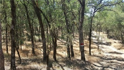Clearlake Residential Lots & Land For Sale: 16053 13th Avenue