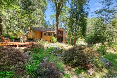 Berry Creek Single Family Home For Sale: 51 Centurion Way