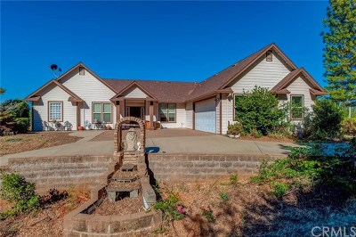 Oroville Single Family Home For Sale: 11166 Yankee Hill Road