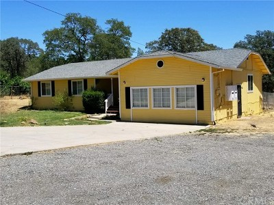Oroville Single Family Home For Sale: 4855 Seacrest Drive