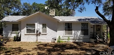 Oroville Single Family Home For Sale: 2983 Lower Wyandotte Road