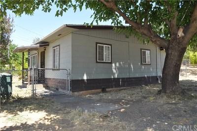 Oroville Single Family Home For Sale: 3199 Oro Bangor