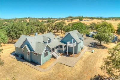 Oroville Single Family Home For Sale: 495 Railbridge Road