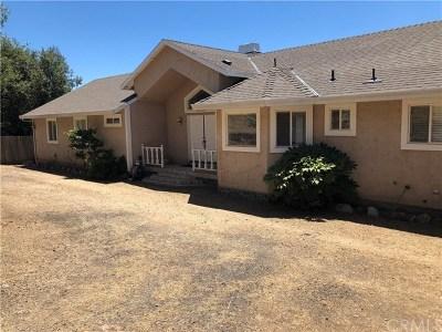 Oroville Single Family Home For Sale: 3219 Trevor Road