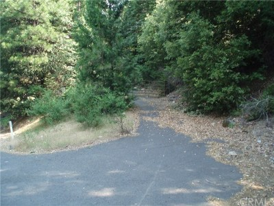 Oroville Single Family Home For Sale: 24 Oroville Quincy Hwy