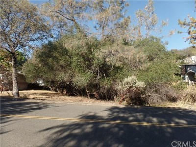 Oroville Residential Lots & Land For Sale: Silver Leaf Drive