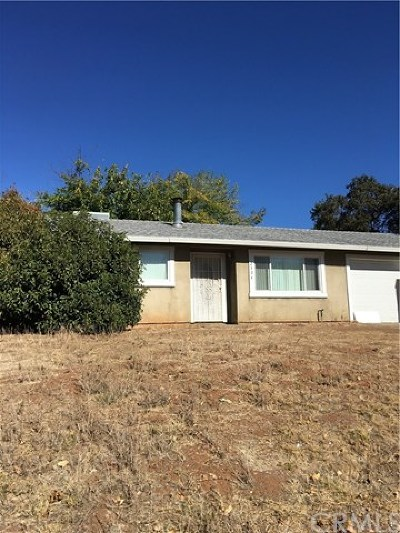 Oroville Single Family Home For Sale: 2504 Forestview Drive