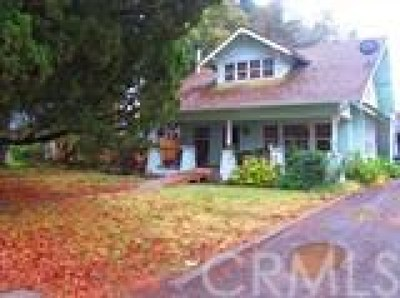 Gridley Single Family Home For Sale: 1875 Sycamore Street